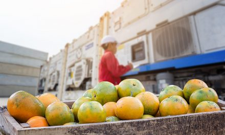 System ERP dla branży spożywczej – najważniejsze korzyści